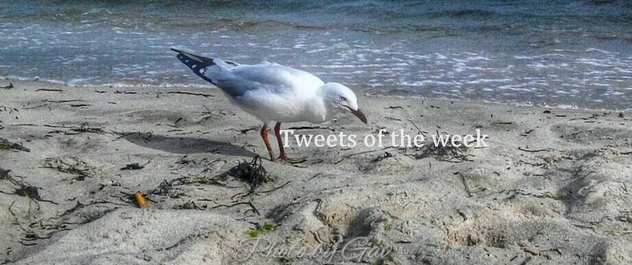 Weekly Favorite tweets collection 15 Nov 2014